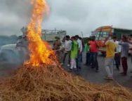 farmer-protest-cover